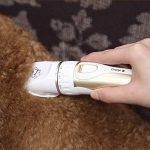 BG&MF Tondeuses électriques Charge Rapide Kit Tondeuse Animaux à Poils sans Fil Rechargeable Rasoir Toilettage Animaux Clippers Animaux Professionnels Lame Détachable et Lavable Bruit Faible avec de la marque BG&MF image 4 produit
